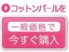 0723_bt_p_sta_off.jpg